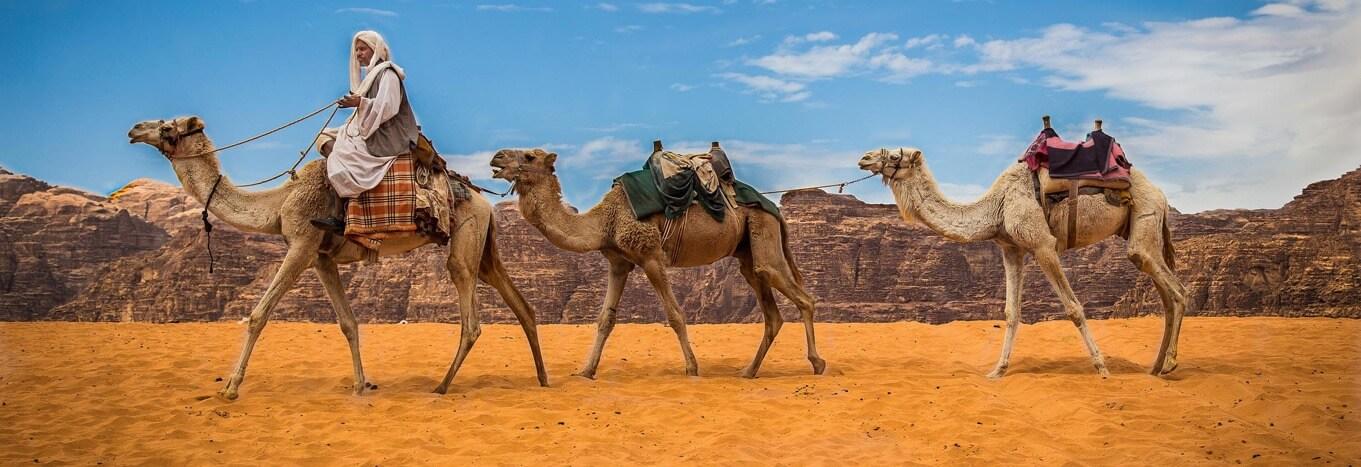 Camel riding in Wadi Rum Jordan